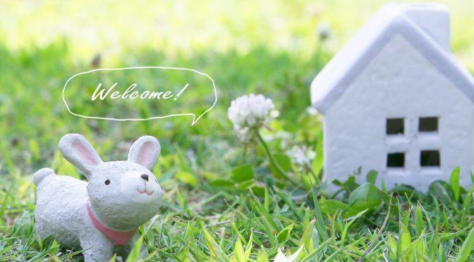 ウサギのちぃとかあちゃん・新しい形で一緒に歩いていく日々(まとめ編)