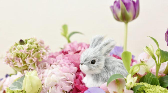 ウサギのちぃとかあちゃん・新しい形で一緒に歩いていく日々(2ヶ月後の変③)