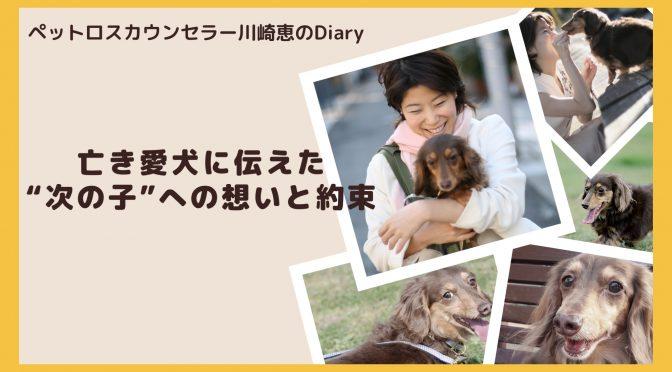 """YouTube動画「ペットロス:亡き愛犬に伝えた""""次の子""""への想いと約束」"""